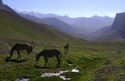 Trekking Mendoza Santiago Portillo